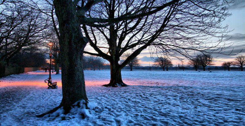 harrogate_stray_in_winter_by_webd3lf-862x445